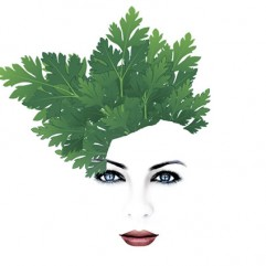 peteršiljeva korenina