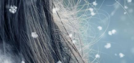 krasni lasje pozimi