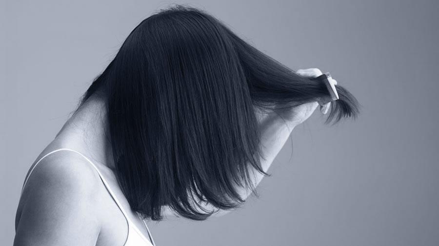 smer rasti las