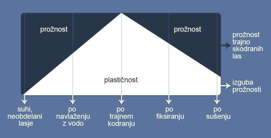 sprememba prožnosti in plastičnosti pri trajnem kodranju las