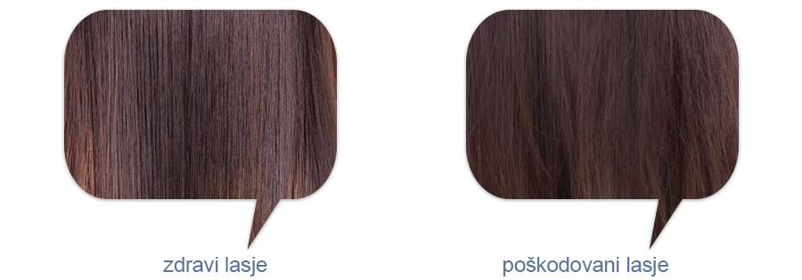 zdravi in poškodovani lasje